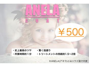 ☆新メニュー【ANELA COAT(アネラコート)】☆_20191206_2