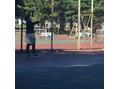みんなでテニス!