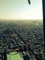 東京のてっぺん!
