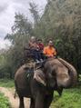 ゾウに乗りました!
