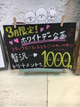 3月限定キャンペーン_20160304_1