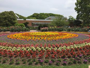 福岡市動植物園_20170518_3
