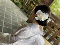 白無垢婚礼ヘアセット
