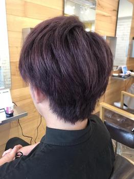 【カラー】ピンクバイオレット_20210723_1