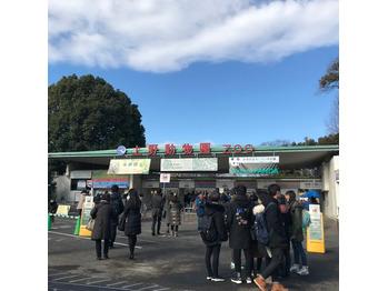 上野動物園に◎_20180131_1