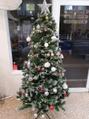 オーガニックヘアサロン ツリー(organic hair salon Tree)クリスマスディスプレイ