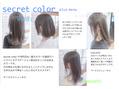 secret color プラスメニュー・サービスメニュー