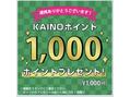 1000ポイントプレゼント☆