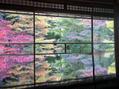 長岡の京都旅-瑠璃光院-