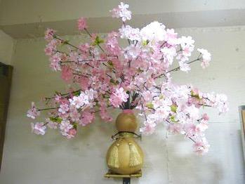 開花宣言から_20160330_1
