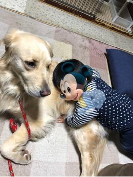 我が家の愛犬。川村Asami_20210225_3