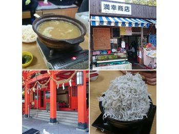 しらす丼を求めて和歌山へ!