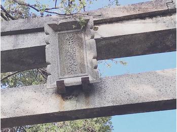 お花見 in 京都_20190410_1