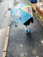 雨...|ω・`)