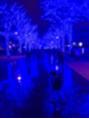 渋谷に上陸!青の洞窟は本当に青かった!!