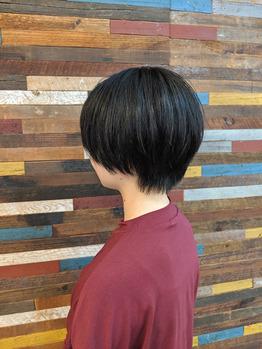 【ショートカット】王道マッシュショート_20190920_1