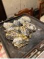 牡蠣小屋☆
