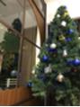 クリスマスディスプレイ 始まりました☆