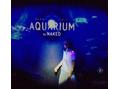 AQUARIUM☆*:.。.