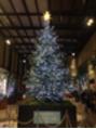 メリークリスマス☆*:.