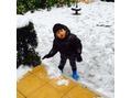 雪遊び(・ω・)ノ