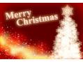 皆様メリークリスマスです!