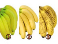 バナナの好み