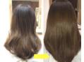 髪の毛を綺麗にしたい方へ。
