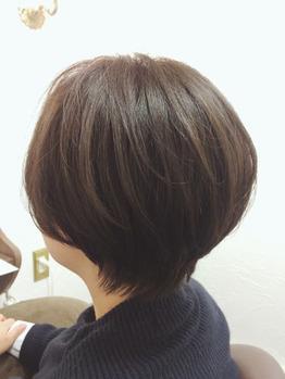 マッシュショート★_20170122_1