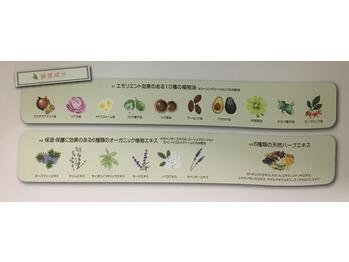 aobaのパーマ剤*高田馬場 美容室_20170622_1