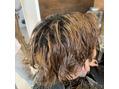 同期の髪の毛事情1