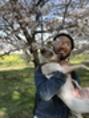 桜とニナと僕