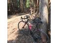 softな自転車通信