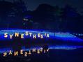 京都イルミネーション『SYNESTHESIA HILLS』