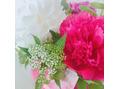 素敵なお花(仙川)