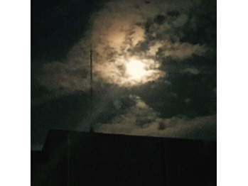 お月見しましょ