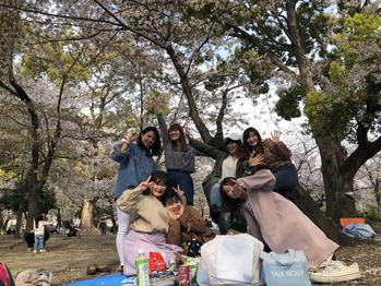 花見_20190416_1