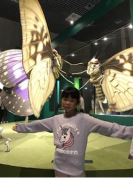 昆虫大好き?_20180913_2