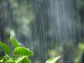 【雨の日に髪が膨らむ方は必見】原因と対策