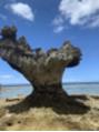 ベルビアンカ(Belle BIANCA)沖縄に行ってきました^ ^