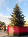クリスマス前に、、、