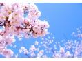 3/23 本日の出勤スタッフ紹介☆