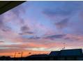 夕空が綺麗だったので