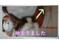 YouTube動画up情報!