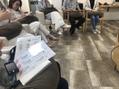 アニスミュゼ(anis musee)アジュバン講習