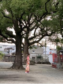 10月の前撮り_20191017_1