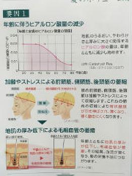 ダブル炭酸ヘッドスパ☆_20160814_2