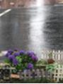 梅雨になりましたが、しかし プロデュース成瀬店