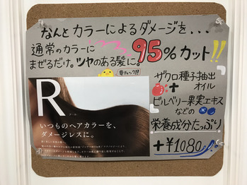 R やっぱり R です_20180721_3
