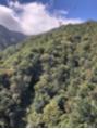 琵琶湖テラスは平日でも混雑してます。